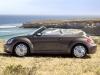Beetle Cabrio 17